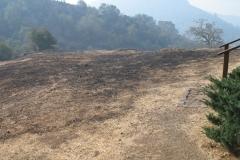 Fire-near-St-Isaac