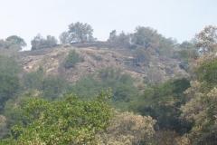 Scorched-Hilltop